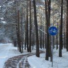 zimowa-leba-2012-11