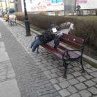wiosna-lebork-02
