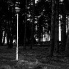 20130407-lubowidz-023