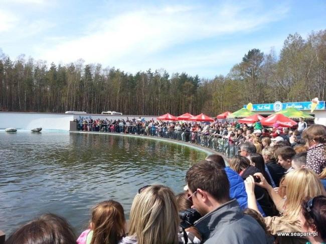 fot. www.seapark.pl