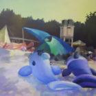 Orka i delfin 906-70x90-2009