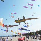 fot. Latawcowa Łeba Kites Flying FB