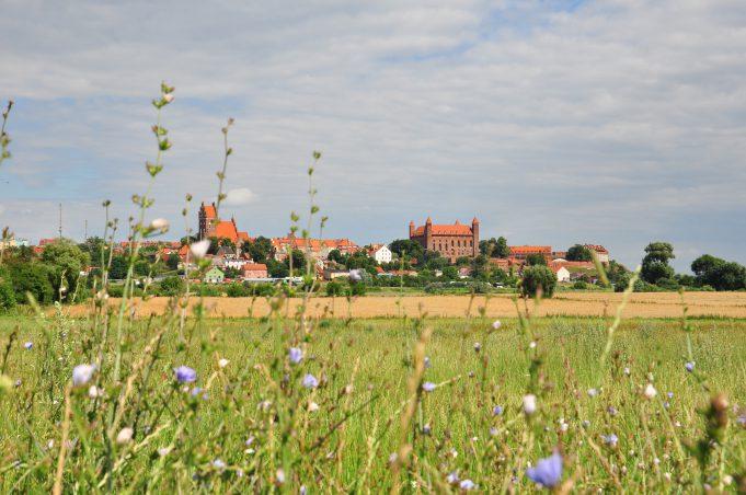 Gniew – panorama miasta. Fot. z zasobów PBPR