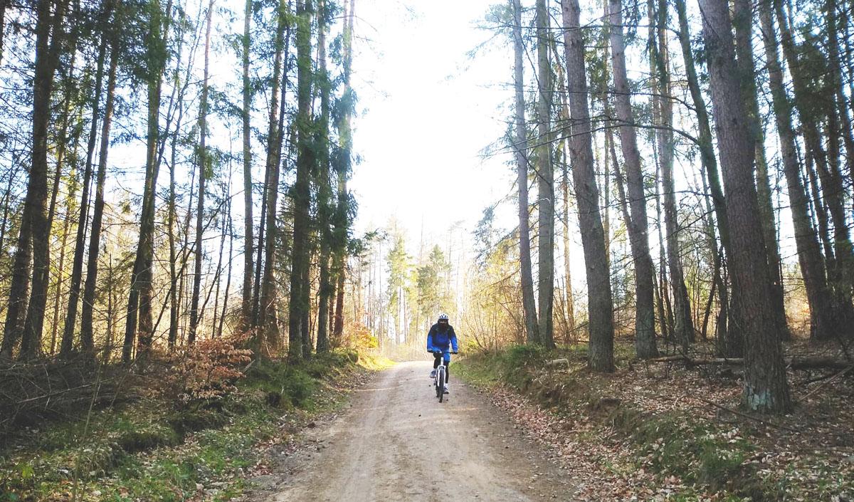 Rowerzysta na rowerowym szlaku w Trójmiejskim Parku Krajobrazowym Fot. NKG